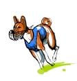 Sketch of running basenji in blue coursing dress vector image