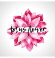 Watercolor pink lotus flowers isolated vector image