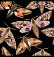 flying moths seamless vector image