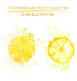 set of watercolor lemon vector image