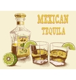 Two stemware of tequila with bottle vector image