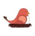 bird nest sleep design vector image
