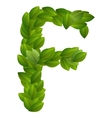 Letter F of green leaves alphabet vector image vector image