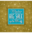 golden christmas background and sale offer vector image
