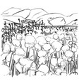hand drawn fields sketch and nature landscape vector image