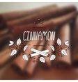 Herbs and Spices Collection - Cinnamon vector image
