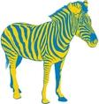 Yellow Blue Zebra vector image vector image