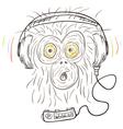 Monkey listens the music vector image