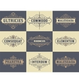 Pack of labels and banners vector image