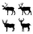 Deer collection vector image