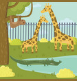 funny sloth giraffe and crocodile characters in vector image
