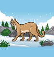 cartoon of cougar in the snowy mountain vector image