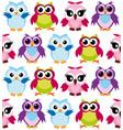 colorful cartoon funny owls vector image