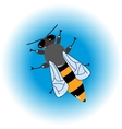 Isolated bee icon vector image