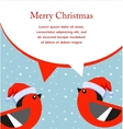 Winter style of a cute birds wearing christmas hat vector image