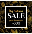 Autumn sale banner with leaves and berry vector image