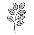 Original Decorative Leaf with Ornament vector image