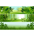 three forest banners vector image