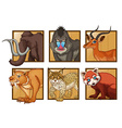 Wild animals on square frame vector image