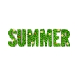 Summer greeting card inscription in capita vector image
