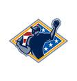 American Baseball Pitcher Throw Ball Retro vector image