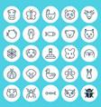 animal icons set collection of ladybird cobweb vector image