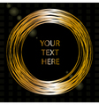 frame with gold wires vector image vector image
