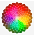 Color flower wheel vector image vector image