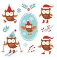 Cute winter owls vector image vector image