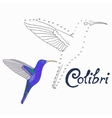 Educational game connect dots to draw colibri bird vector image