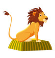 circus lion icon cartoon style vector image