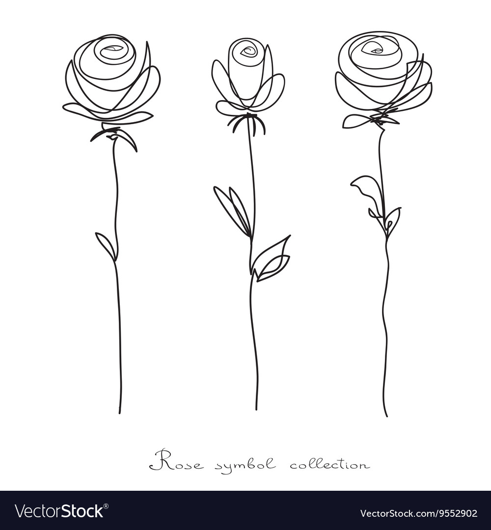 Roses collection of isolated flower sketch vector