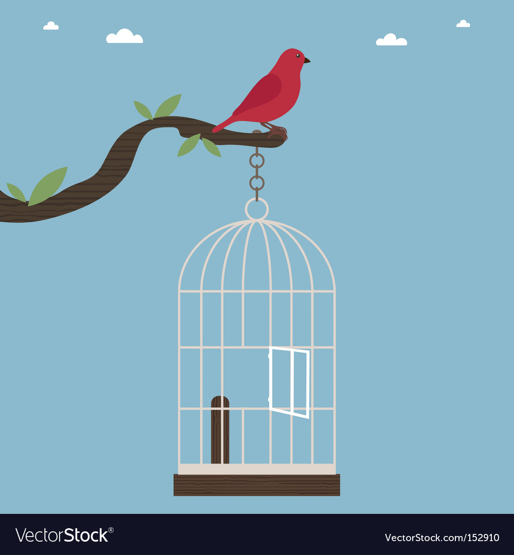 Bird out of cage vector