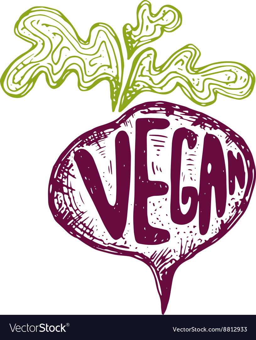 Hand drawn beetroot with text vegan vector