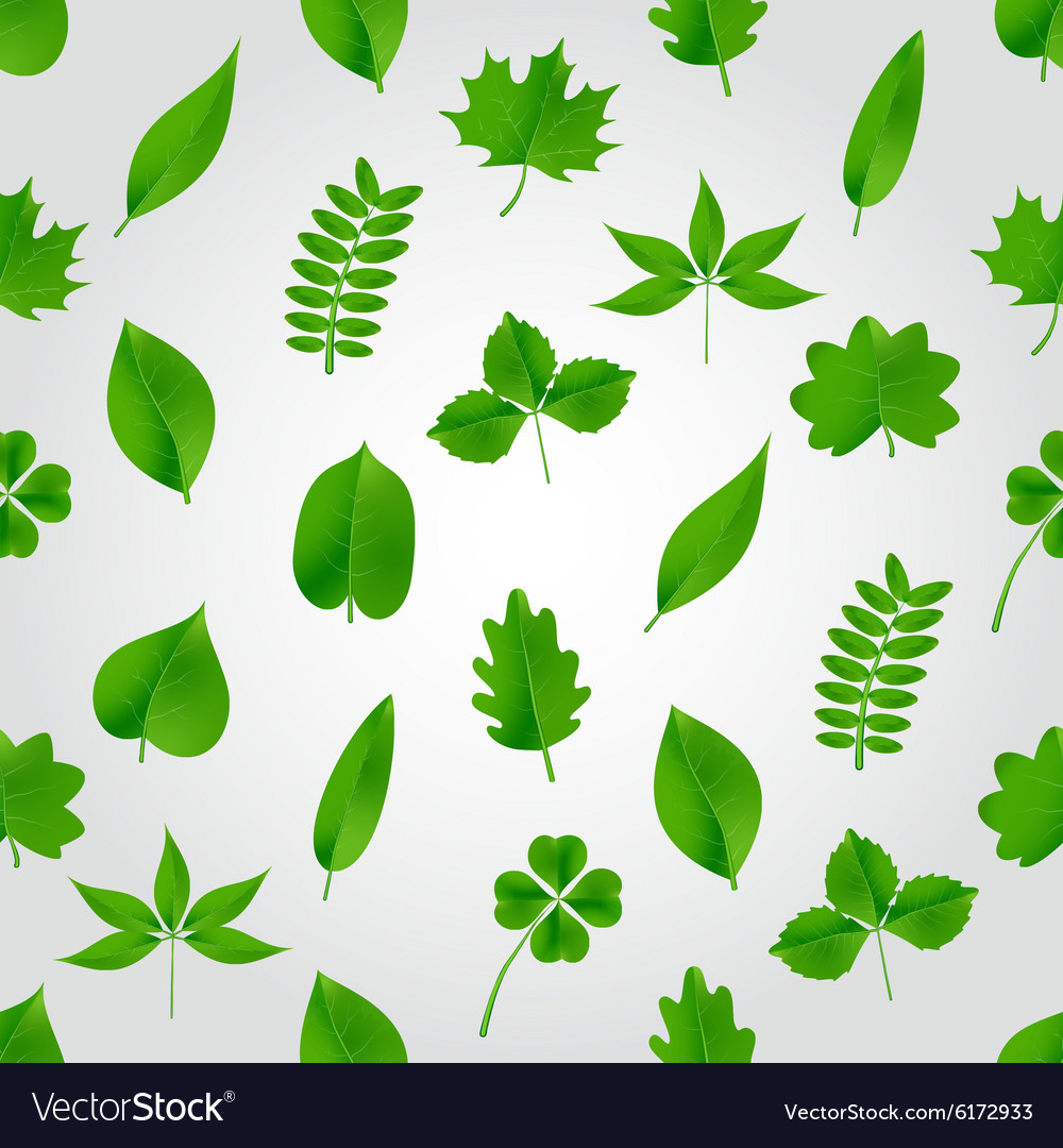 Natural green beautiful leaves icon seamless vector
