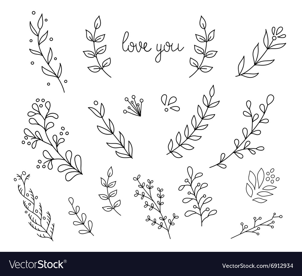 Flourish ornate decoration ink calligraphy style vector