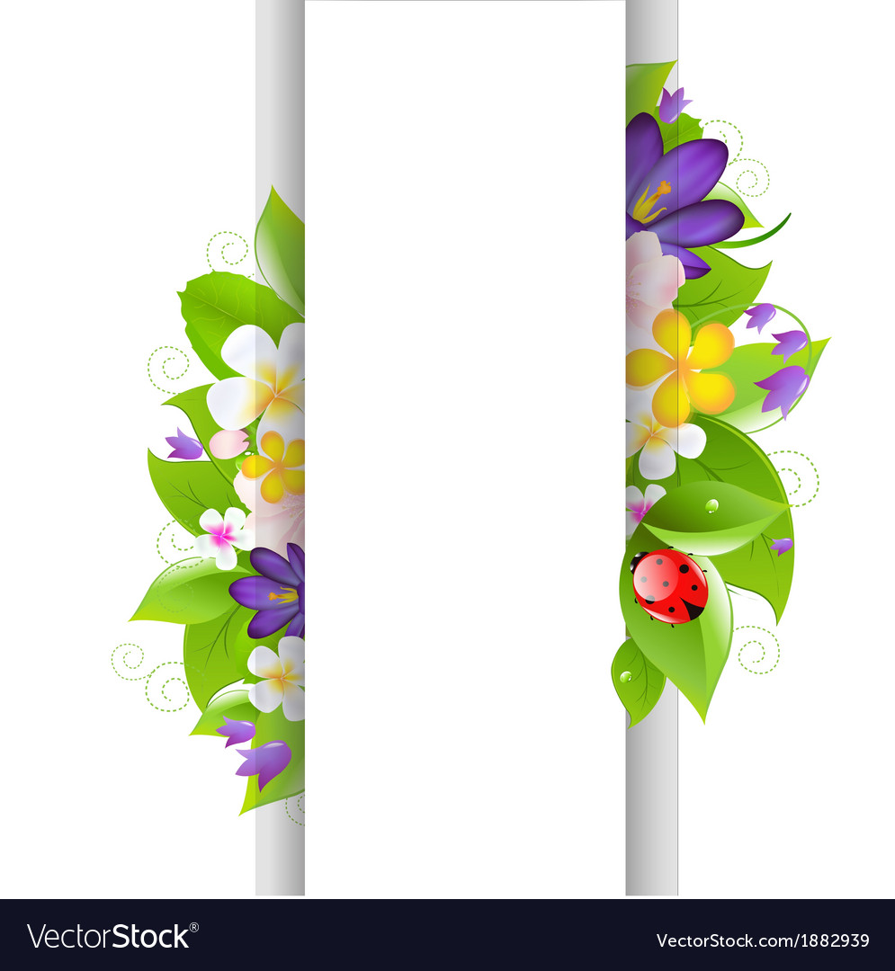Flowers and ladybug with paper vector