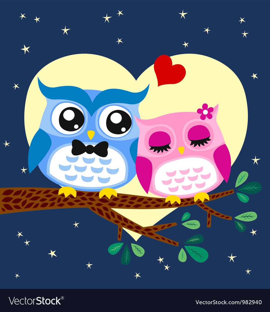 Owl in love vector