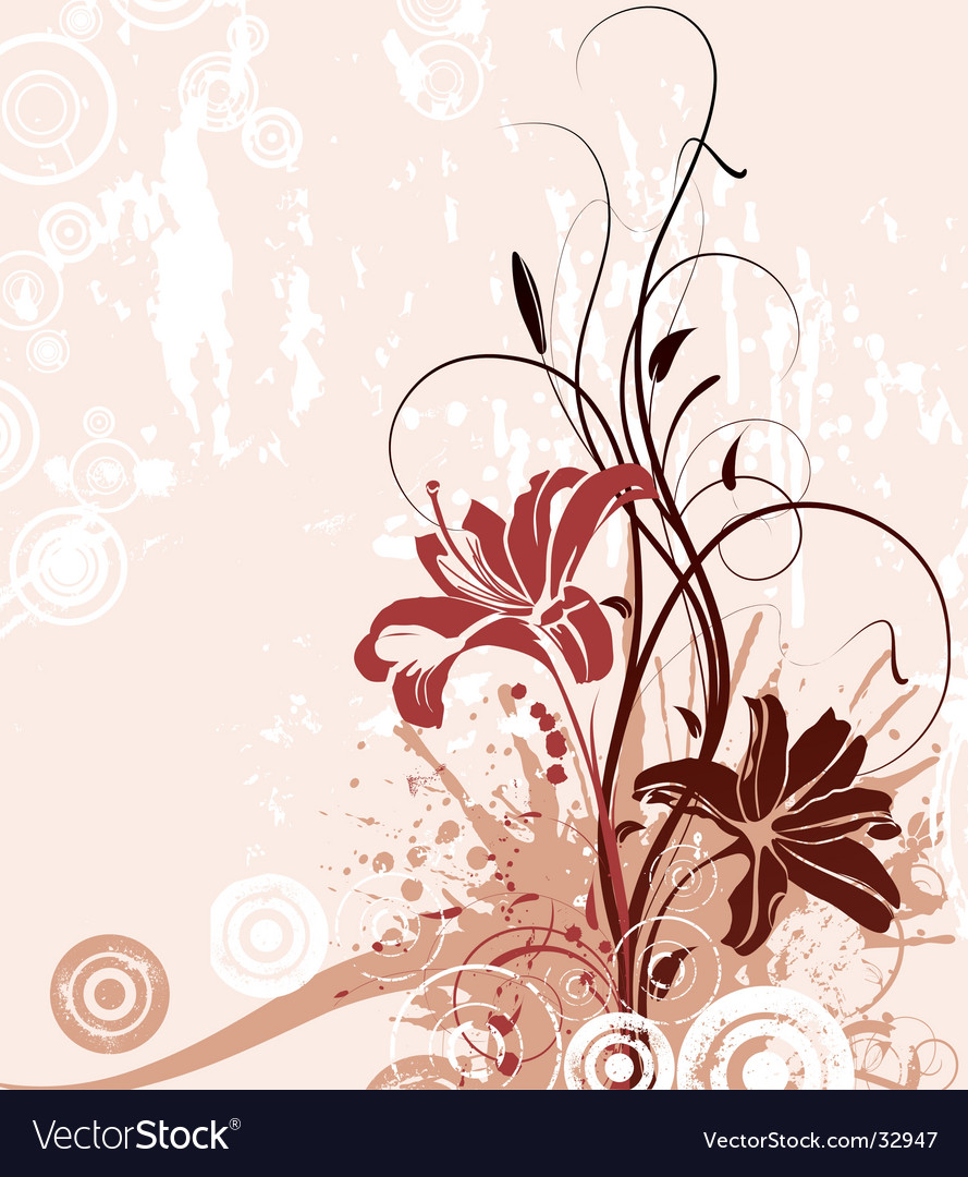Floral abstract with lily vector