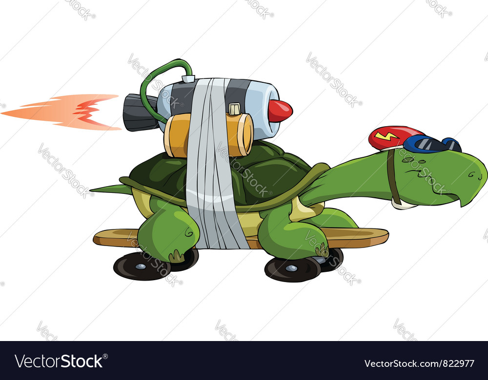 Turtle on a skateboard vector