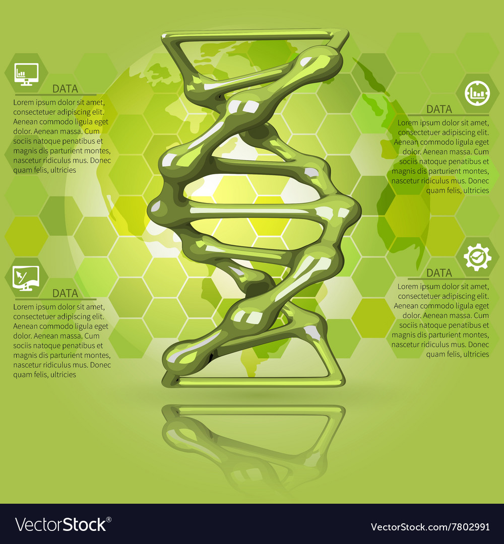 Green infographics dna vector