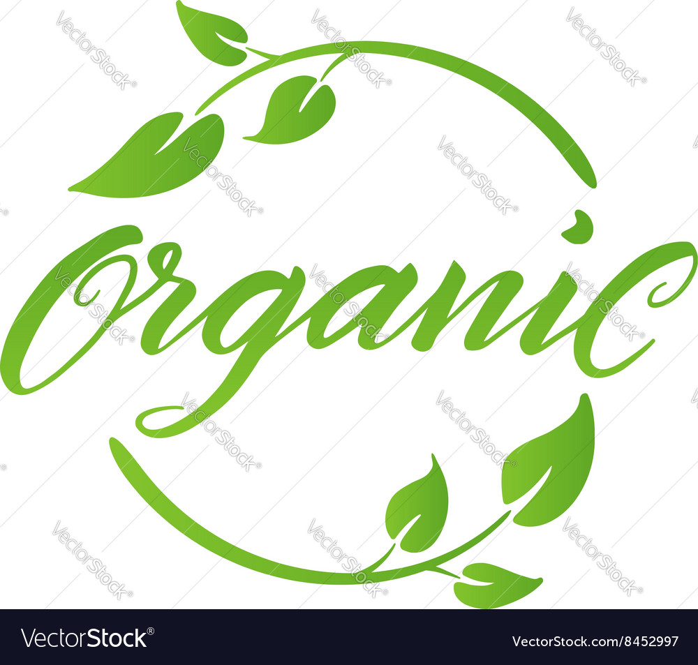 Organic brush lettering label logo template vector