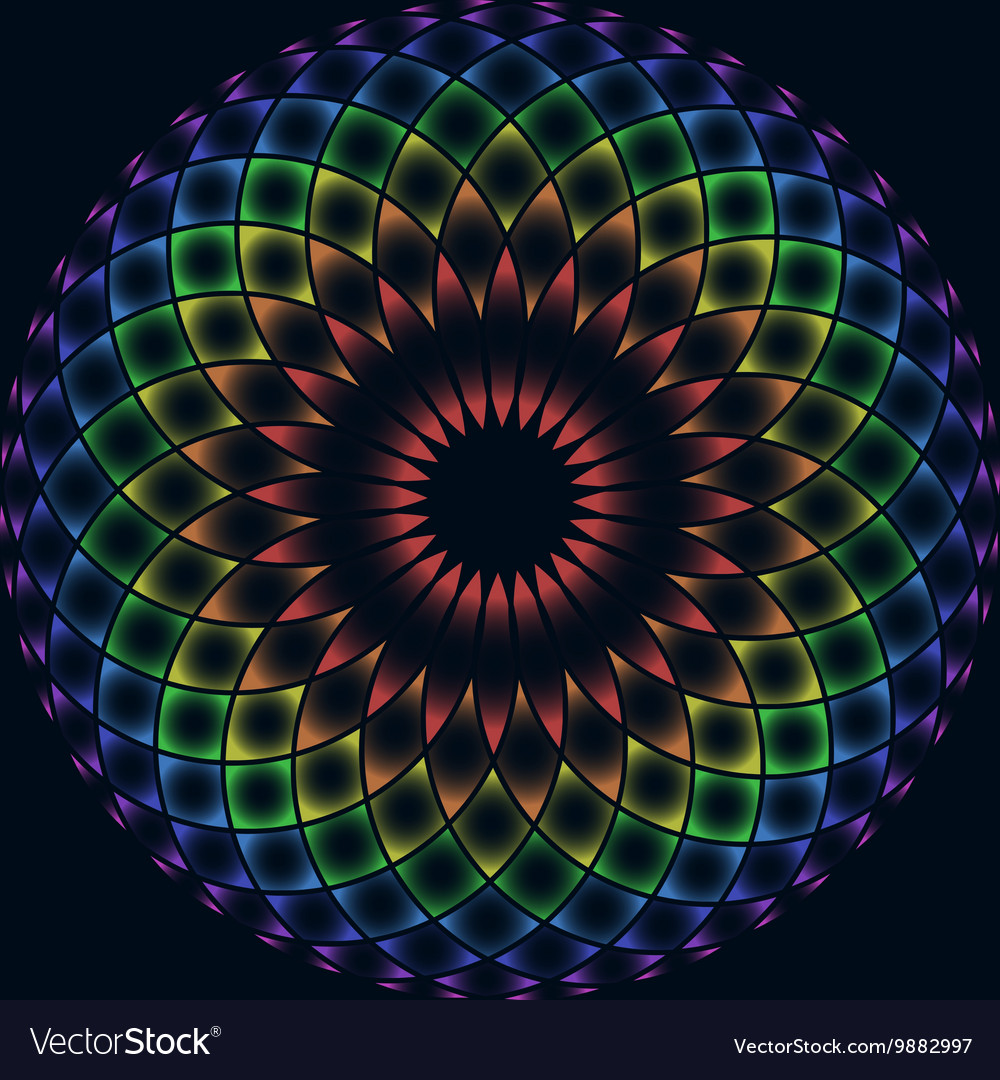 Rainbow flower of life vector