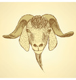 Sketch cute goat head in vintage style vector image