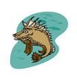 Pigfish Swimming vector image vector image
