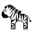 zebra isolated on white background vector image