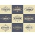 Pack of labels and banners vector image vector image