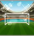 football stadium with soccer goal net grass and vector image