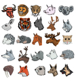set of mammals vector image