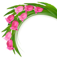 Celebration background with pink flowers vector image vector image